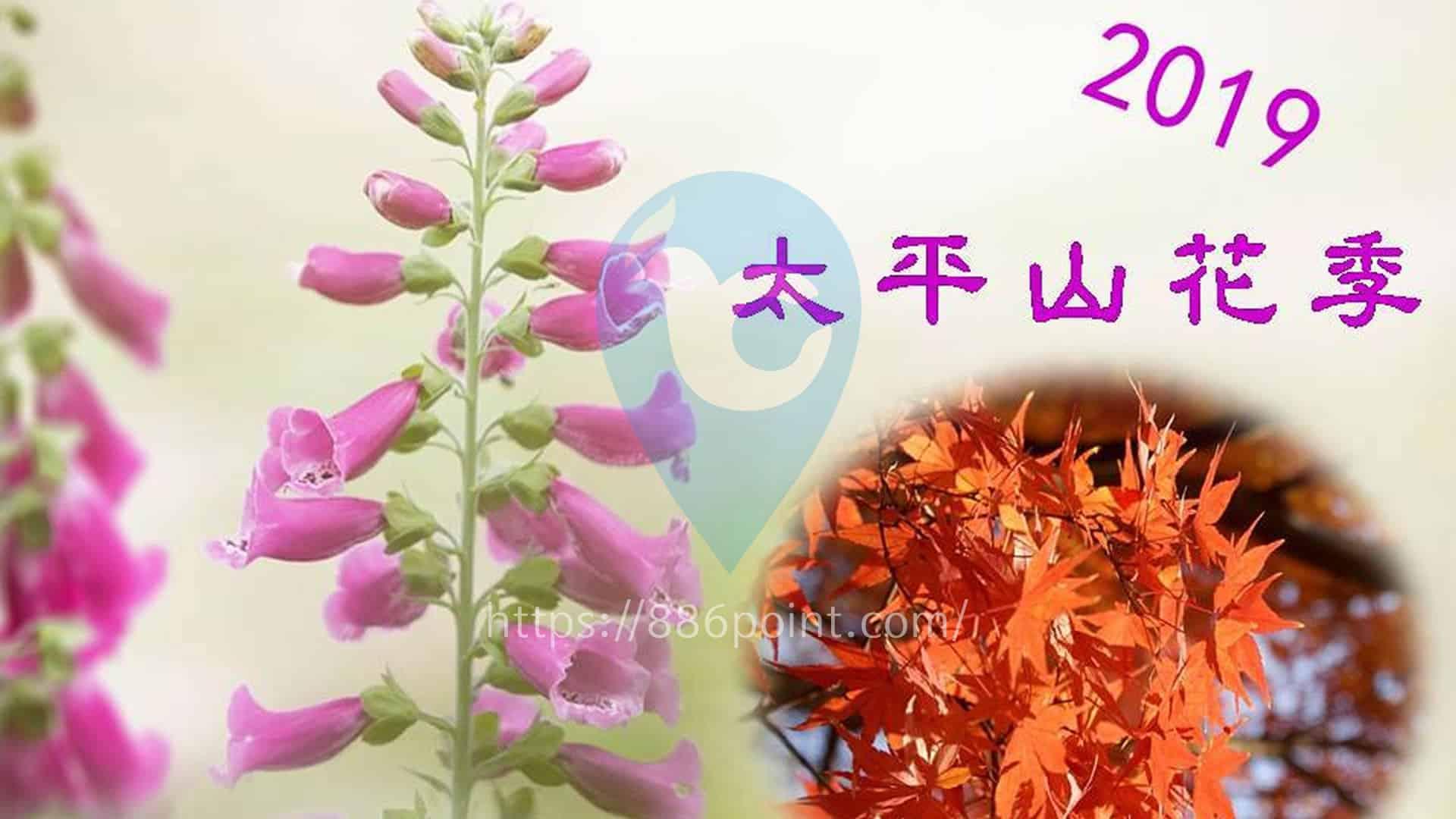 太平山花季